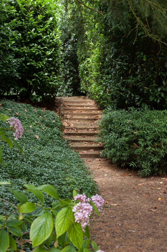 Steps up to north garden at Suffolk estate